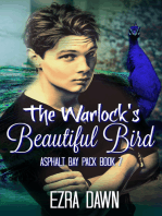 The Warlock's Beautiful Bird