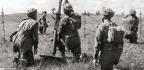 Polish Airborne At Arnhem