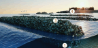 Oyster Architecture Could Save Our Coastlines