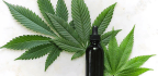 CBD Oil and Its Effects on Mood, Depression and Anxiety