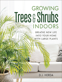 Growing Trees and Shrubs Indoors: Breathe New Life into Your Home with Large Plants