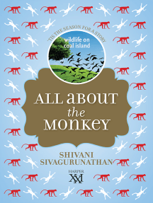 All About Monkey