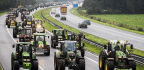 Tractor Trails Of Protesting Dutch Farmers Snarl Traffic for Hundreds Of Miles