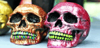 Our Skulls Fit DaVinci's 'Golden Ratio'