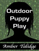 Outdoor Puppy Play