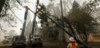 PG&E Cuts Power Across Northern California As Winds Bring Critical Fire Danger