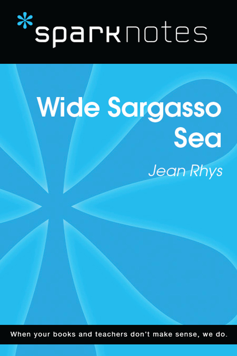 Book Analysis Wide Sargasso Sea by Jean Rhys Analysis and Reading Guide : Detailed Summary