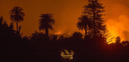 California Wildfires and Power Outages Signal Long Road Ahead, But Climate Ambition Sets the Right Course