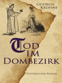 Tod im Dombezirk: Historischer Roman