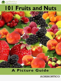 101 Fruits and Nuts: A Picture Guide