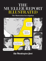 The Mueller Report Illustrated