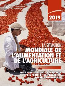 La situation mondiale de l'alimentation et de l'agriculture 2019: Aller plus loin dans la réduction des pertes et gaspillages de denrées alimentaires