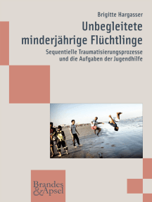 Unbegleitete minderjährige Flüchtlinge: Sequentielle Traumatisierungsprozesse und die Aufgaben der Jugendhilfe