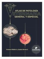 Atlas de patología veterinaria. General y especial