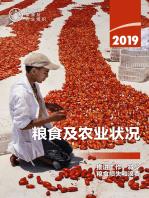 2019年粮食及农业状况