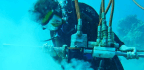 Corals Show Intense El Niño Swings During Industrial Age