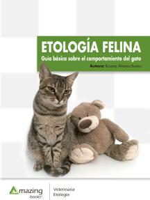 Etología felina: Guía básica sobre el comportamiento del gato