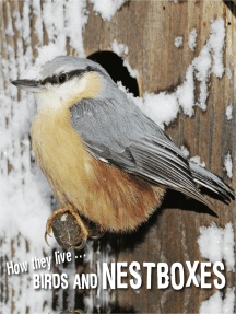 How they live... Birds and nestboxes: Learn All There Is to Know About These Animals!