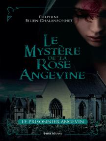 Le prisonnier angevin: Une saga d'intrigue historique