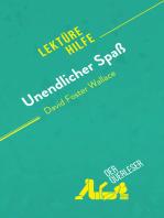 Unendlicher Spaß von David Foster Wallace (Lektürehilfe)