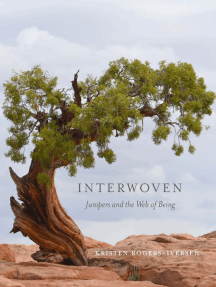 Interwoven: Junipers and the Web of Being