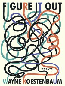 Figure It Out: Essays