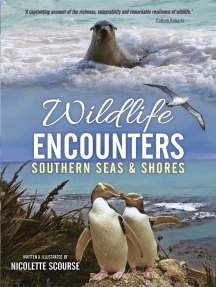 Wildlife Encounters: Southern Seas & Shores
