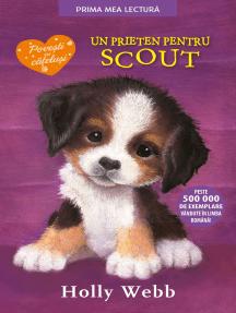 Un Prieten Pentru Scout