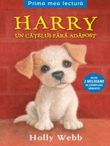 Harry, Un Cățel Fara Adapost