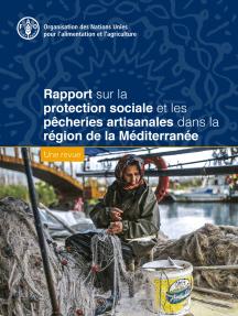 Rapport sur la protection sociale et les pêcheries artisanales dans la région de la Méditerranée: Une revue