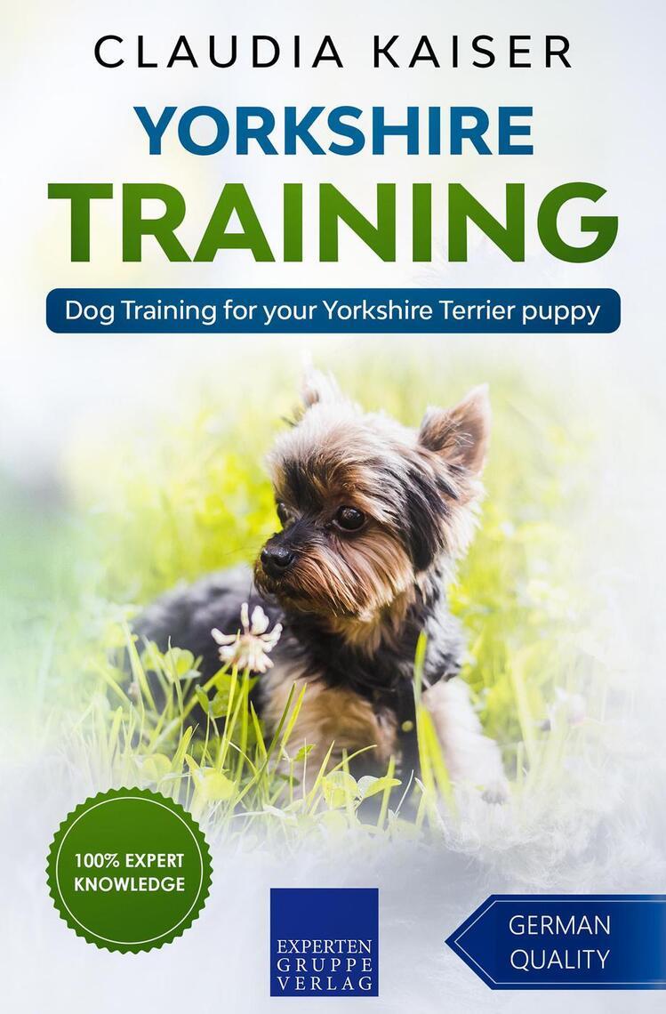 Lea Yorkshire Training Dog Training For Your Yorkshire Terrier Puppy De Claudia Kaiser En Linea Libros