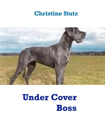 Under Cover Boss