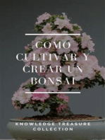 Como Cultivar y Crear un Bonsai