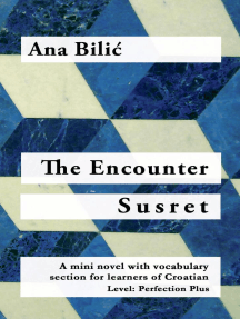 The Encounter / Susret - A Croatian Mini Novel with vocabulary section and English introduction (C1): Croatian made easy