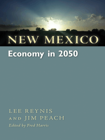 New Mexico Economy in 2050