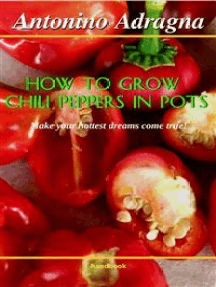 How To Grow Chili Peppers In Pots: (Make Your Hottest Dreams Come True!)