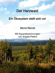 Der Harzwald - Ein Ökosystem stellt sich vor: Wald: Ein Lösungsbaustein für die Abschwächung des Klimawandels