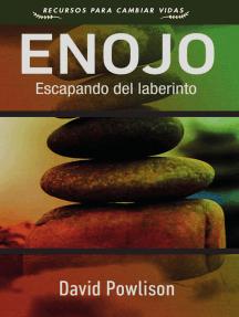 Enojo: Escapando del laberinto