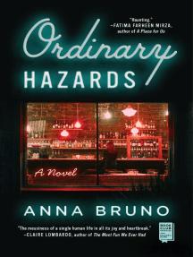 Ordinary Hazards: A Novel