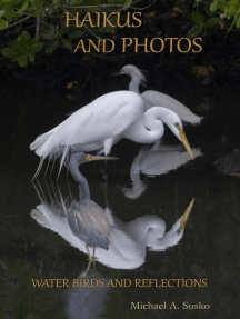 Haikus and Photos: Water Birds and Reflections