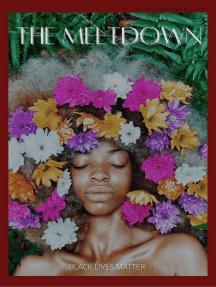 The Meltdown: THE MELTDOWN SERIES, #3