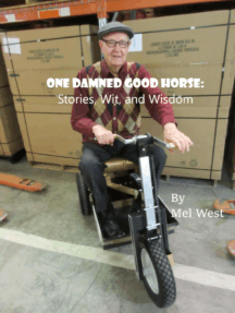 One Damned Good Horse: Stories, Wit, and Wisdom