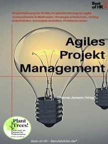 Agiles Projektmanagement: Projektführung für Profis, Projektförderung für agile Unternehmen & Methoden, Strategie entwickeln, richtig entscheiden, Konzepte erstellen, Probleme lösen