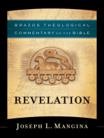 Revelation (Brazos Theological Commentary on the Bible)