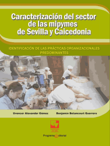 Caracterización del sector de las mipymes de Sevilla y Caicedonia:: identificación de las prácticas organizacionales predominantes.