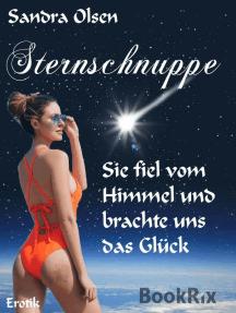 Sternschnuppe: Sie fiel vom Himmel und brachte uns das Glück