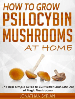 How to grow Psilocybin Mushrooms at Home