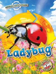 Animal Life Cycles: Ladybug