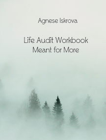 Life Audit Workbook Meant for More