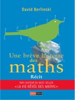 Une brève histoire des maths: La saga de notre science préférée